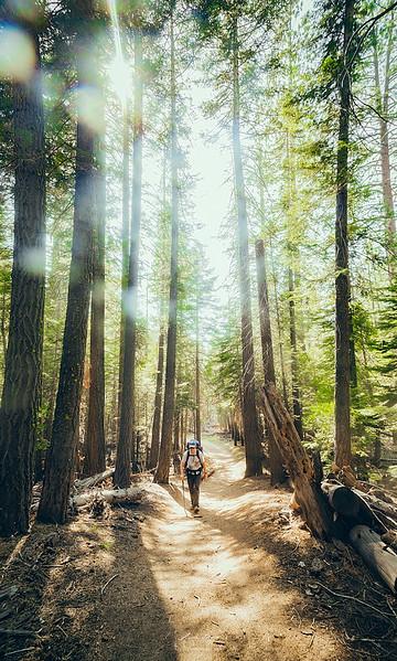 08_10-13_2017_Yosemite_SteveHike_01.jpg