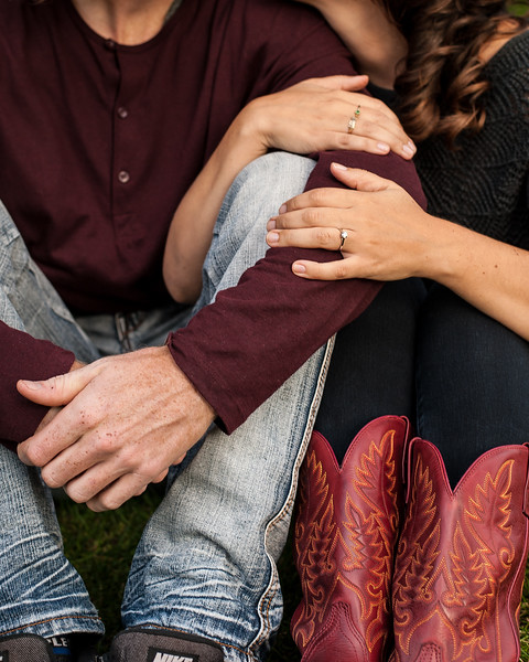 Karen and Andrew - Engagement-84.jpg