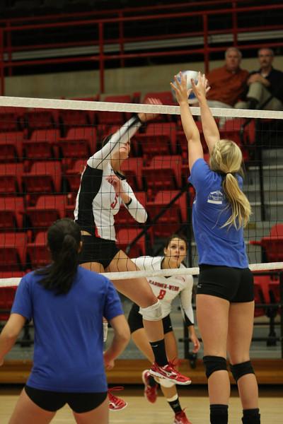 20110330_volleyball_as41.jpg