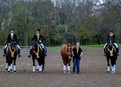 LVDA Team Competition Bucks County Horse Park 2017