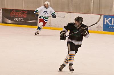Hockey Game