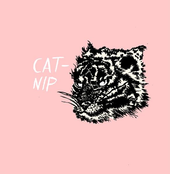 Catnip.jpg