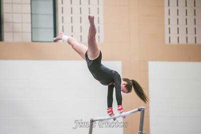 Madison Memorial Gymnastics - Feb 06, 2014