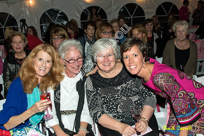 Pink Zone Ladies Night Out Fashion Show - The Little Black Dress Goes Pink -  at Seven Mountains Wine Cellars