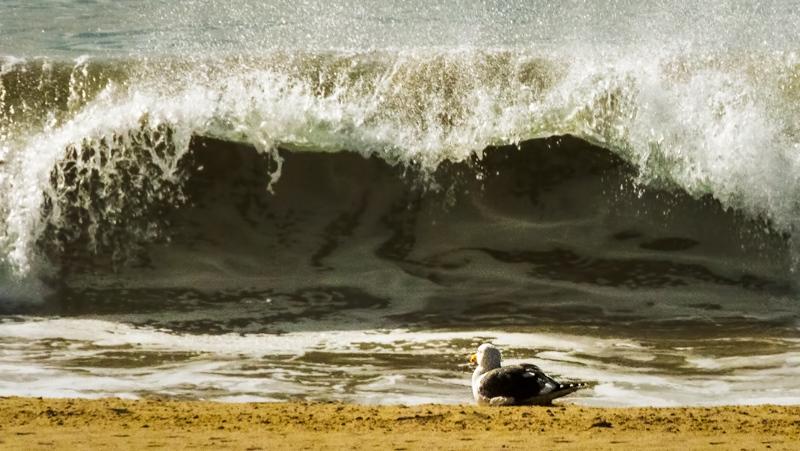 December 8 - Tranquility.jpg