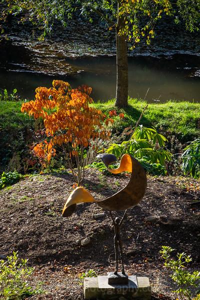 Himalayan Garden Oct 18-38.jpg