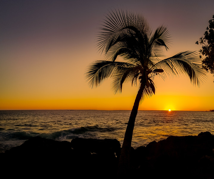 Kona Paradise two