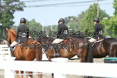 Sussex County Benefit Show July 12, 2014