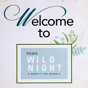 Wild Night 2019