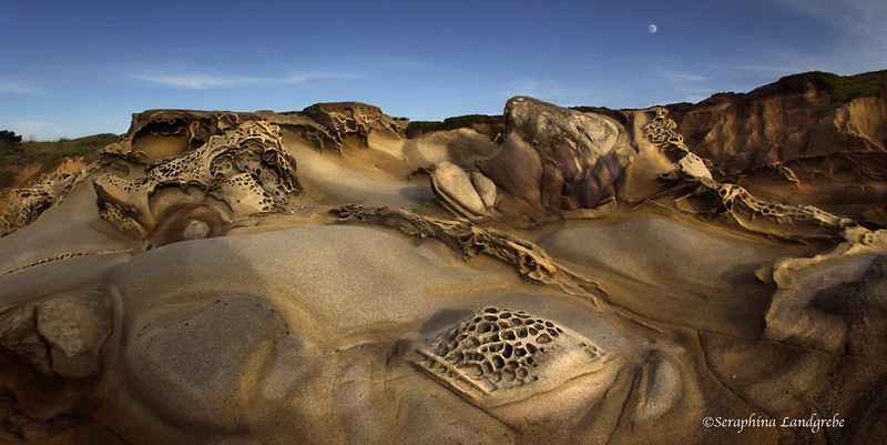 1.Moonlit Ocean Bluff .jpg