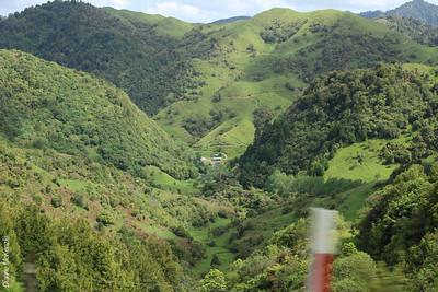 Waioeka Gorge + Nth Coast
