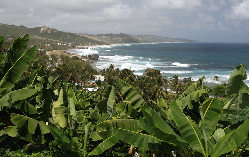 East side of Barbados near Bathsheba.