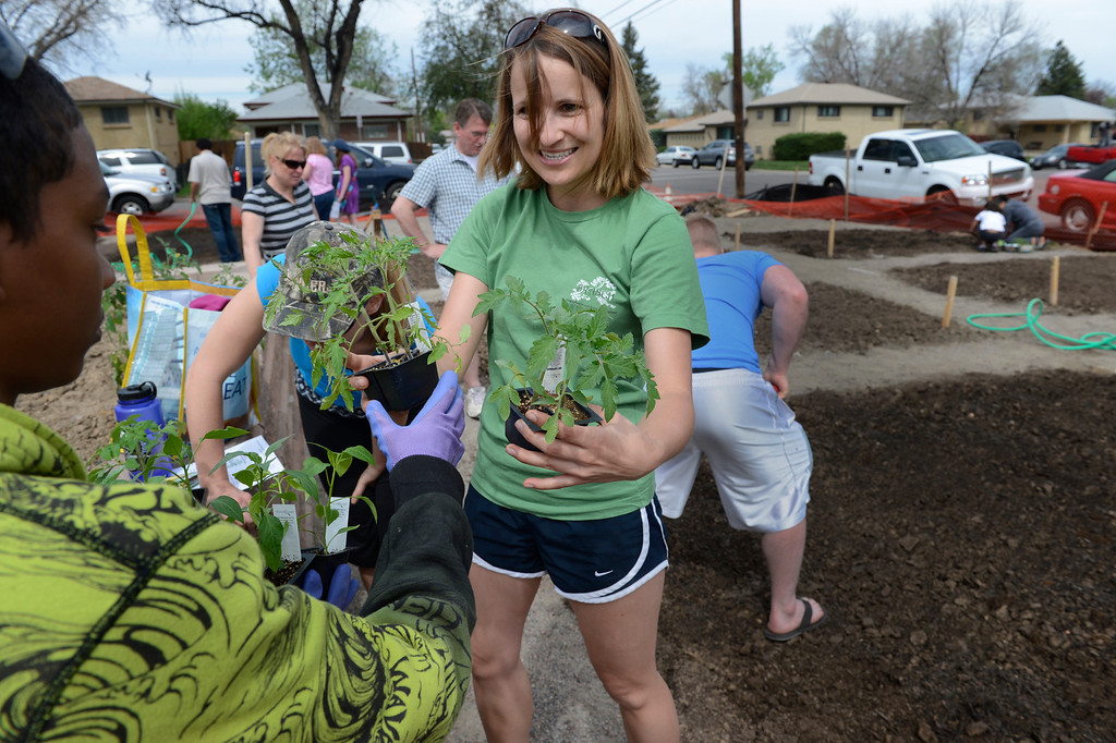 . AURORA, CO. - MAY 18:  Lisa Walde, of BRANCH, hands out tomato and jalapeno plants during the North Middle School Garden Festival in Aurora, CO May 18, 2013. The celebration marked the opening of the first school-based community garden in Aurora Public Schools. The project, funded by The Piton Foundation, was made possible through a partnership of Aurora Public Schools, Denver Urban Gardens (DUG), and Anschutz Medical Campus Department of Family Medicine and BRANCH, a multi-disciplinary student organization from the medical campus. A second garden is scheduled to open later this year at Hinkley High School. (Photo By Craig F. Walker/The Denver Post)