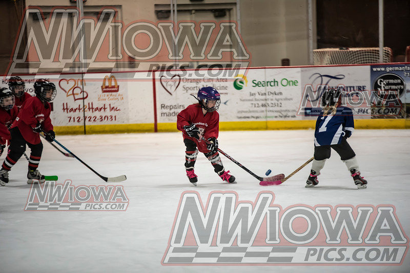 Sioux Center Mini Mite Fest