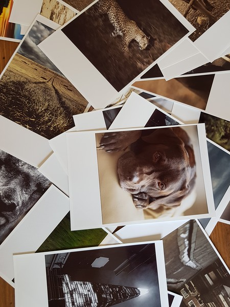 Polaroid Conversions