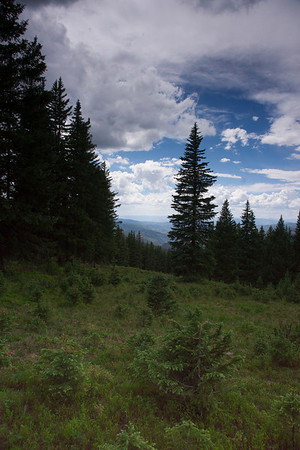 Colorado June 2012