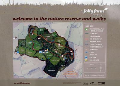 Visit to Folly Farm