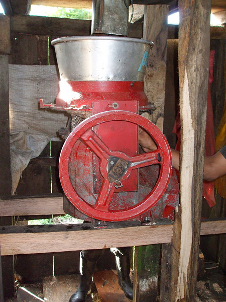 "Machine to depulp the ""cherry"" coffee bean"