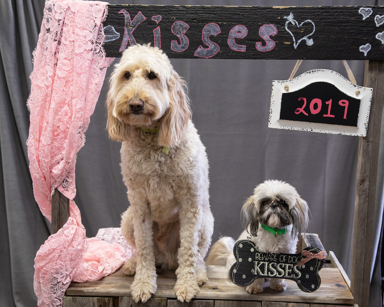 GDU Kissing Booth 2019-3.jpg