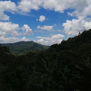 Las Selvas, El Paraiso