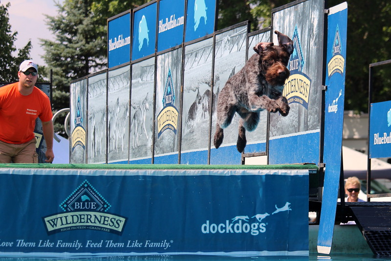 Dock Dogs at Fair-153.JPG