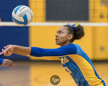 9-19-17 Minneapolis Roosevelt v Minneapolis Edison Volleyball