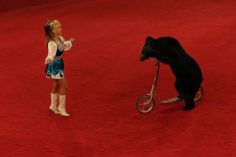 Bear at circus - Almaty