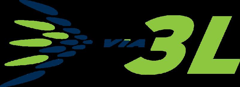 V3L-POS-RGB.png