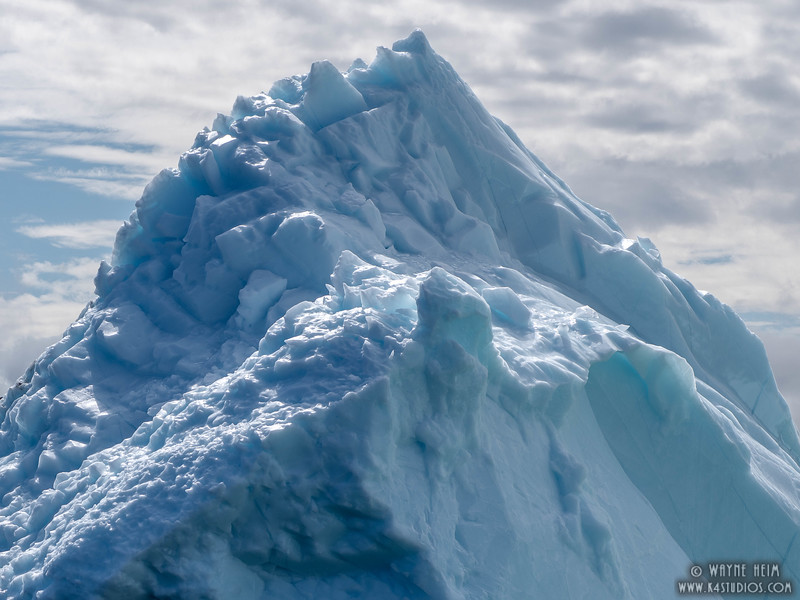Iceberg 34    Photography by Wayne Heim