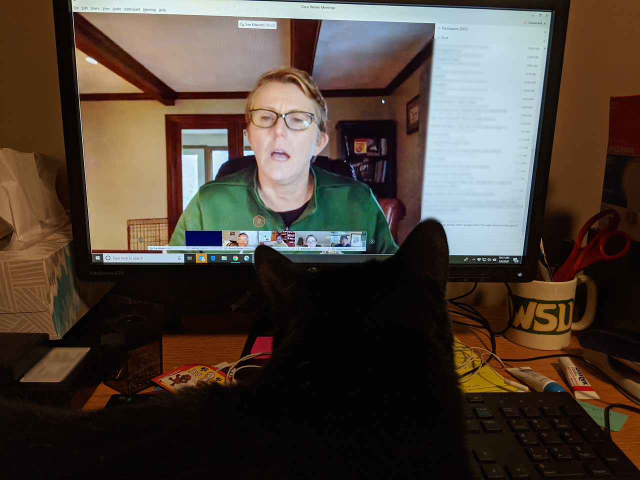 Cat wants to watch Dr. Edwards video-chat also, May 8, 2020