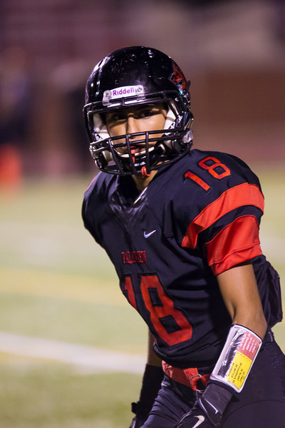 20141121 Palmview v Weslaco East Playoff Football 043.jpg