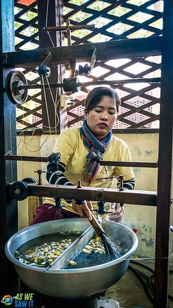 Silk-Farm-01749.jpg