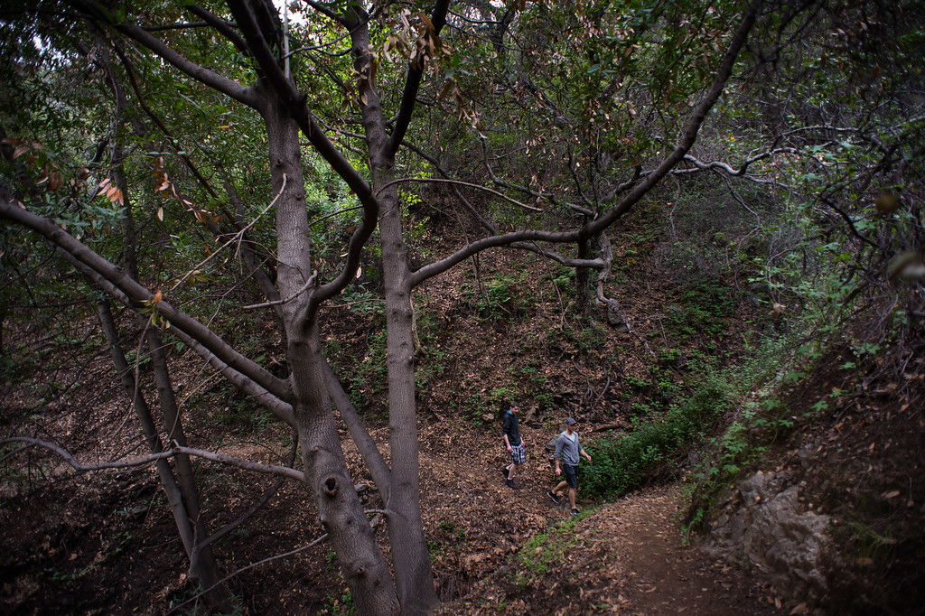 . Matthew Farrell, right, of Silver Lake, takes his brother Tim, of New York, to Fish Canyon Falls in Angeles National Forest on Friday, February 27, 2015. Duarte received a $25,000 grant from Los Angeles County to rehabilitate the trail. (Photo by Sarah Reingewirtz/Pasadena Star-News)