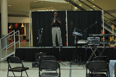 2013 Savannah Mall (GA) Black History Art Event