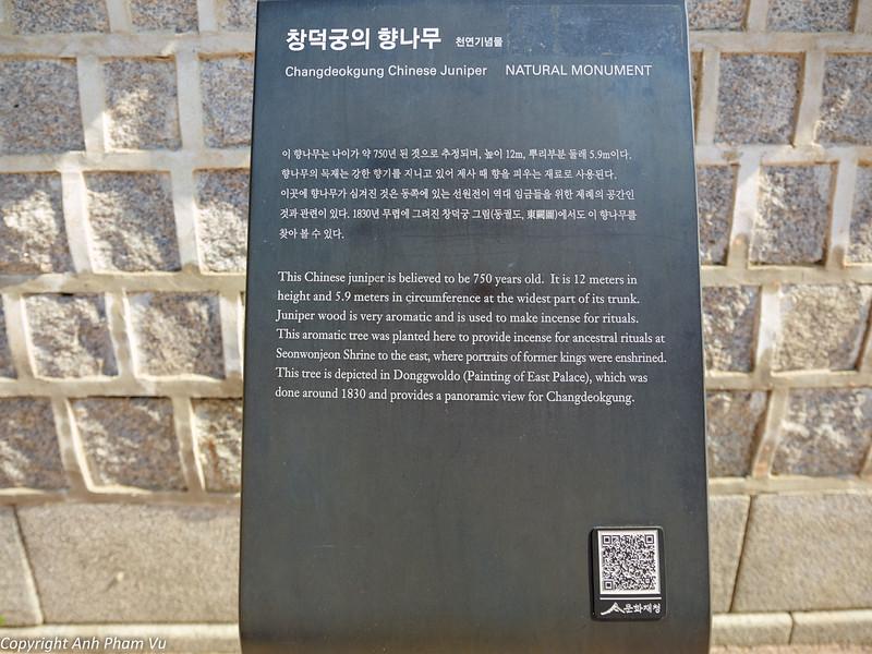 Uploaded - Seoul August 2013 249.jpg