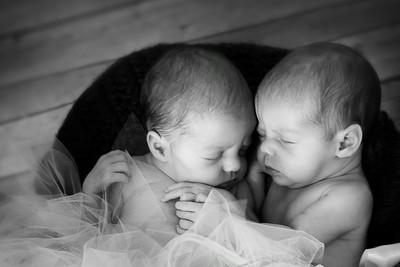 Bryce/twins
