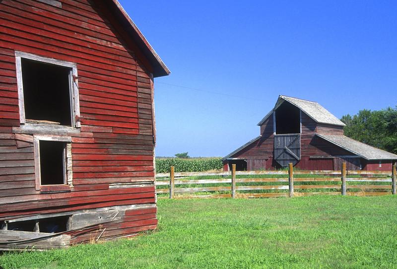 Classic Barns & Corn