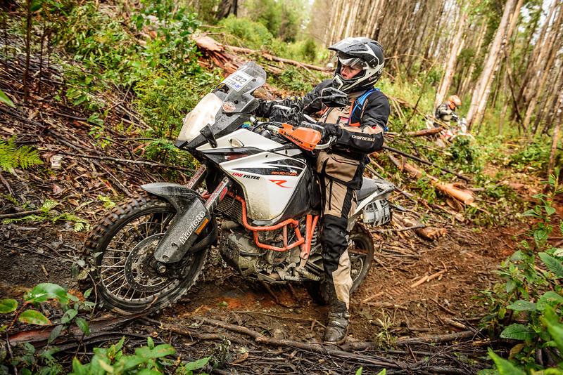 2019 KTM Australia Adventure Rallye (240).jpg