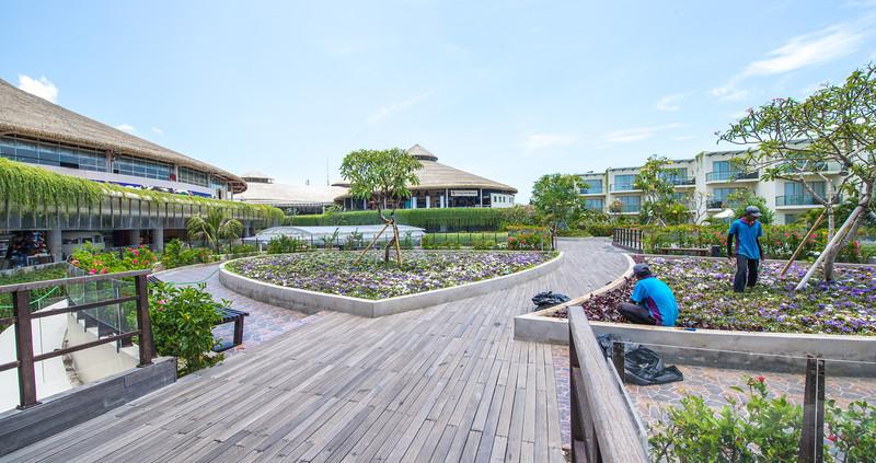 Boardwalk Garden