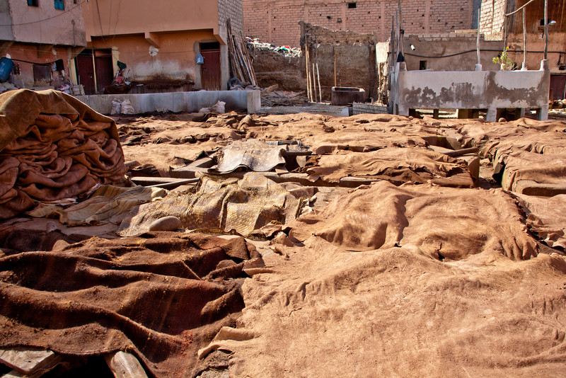 morocco_6207031484_o.jpg
