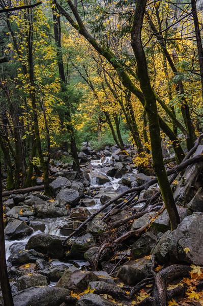 20101110 Yosemite 039.jpg