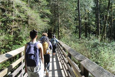Wallace Falls Hike 8Apr16