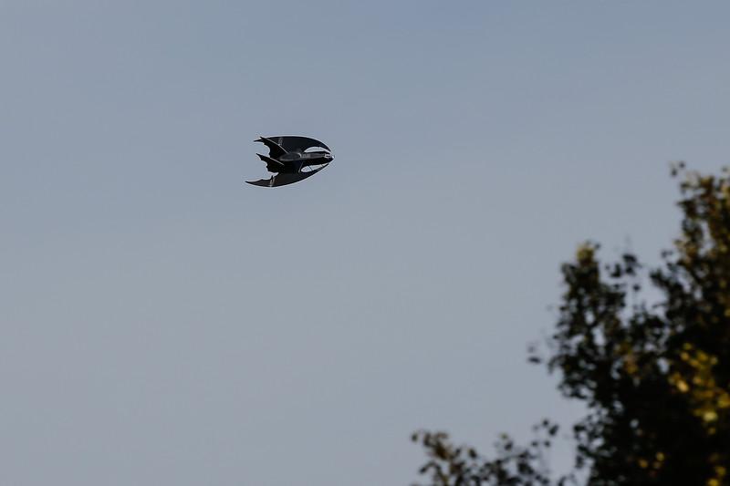 BatJet-15.jpg