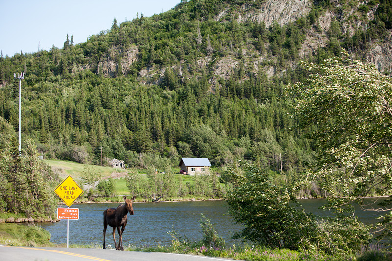 Alaska Copper River-8275.jpg