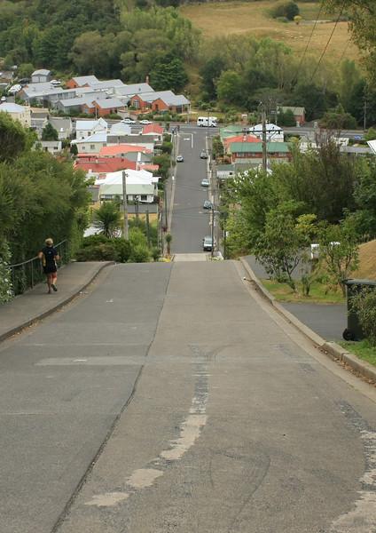 South Island 480.JPG