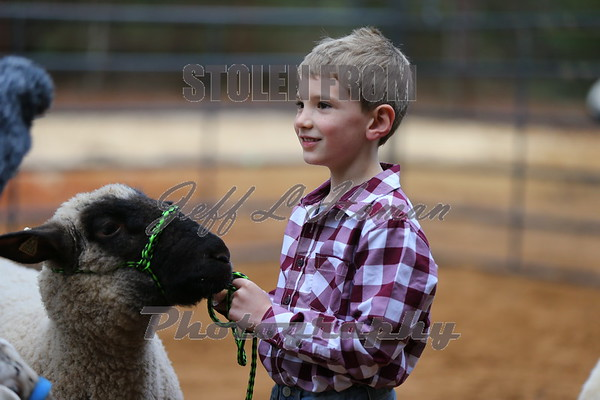 2019 Lauderdale County Livestock Show