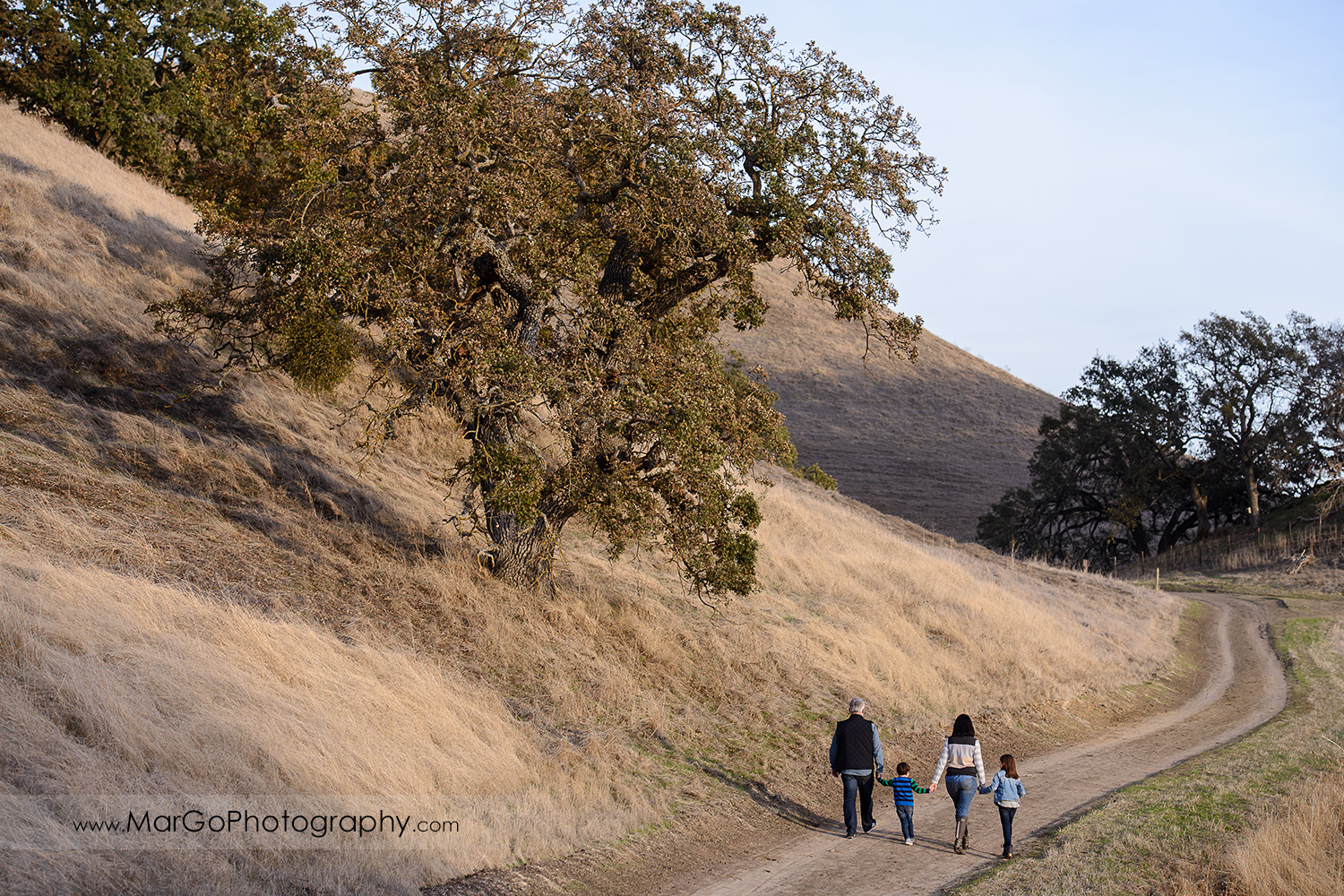 family of four holding hands and walking away on the trail during photo session at Diablo Foothills Regional Park in Walnut Creek