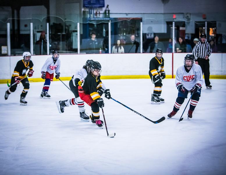 Bruins2-328.jpg
