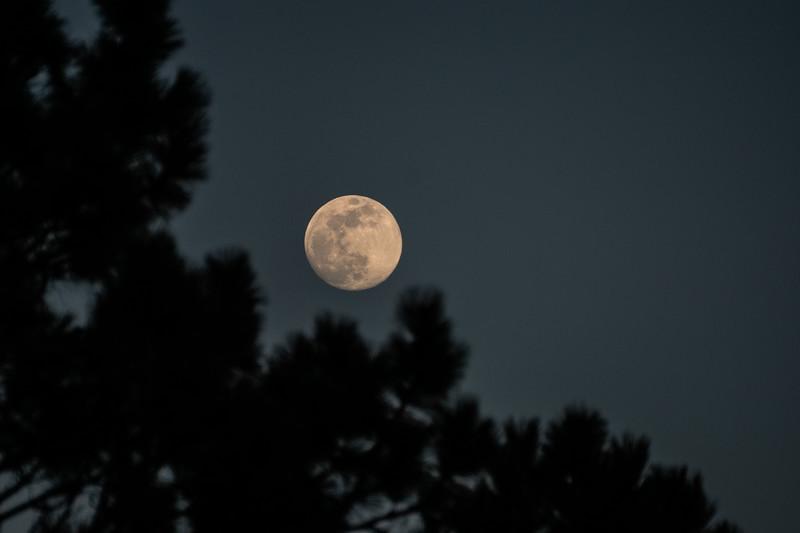 Moon-4 - Copy.JPG