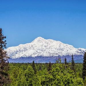 The Best Alaska Tour